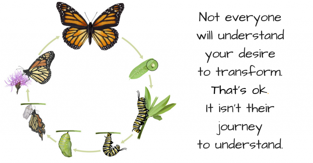 transformare fluture